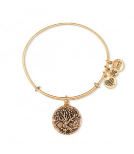 Alex and Ani pulseras